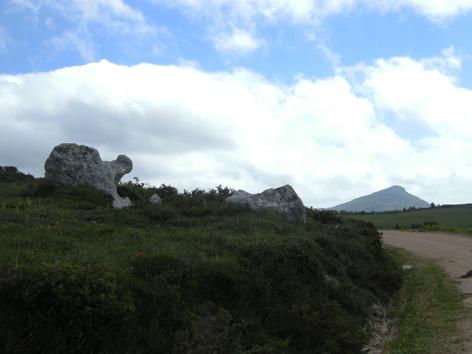 tortuga-de-piedra-y-pico-el-castro